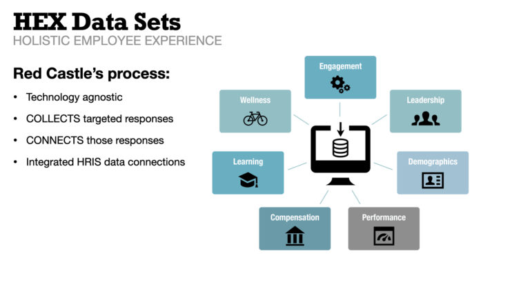Red Castle's HEX process connects and collects your data from your various systems. We then make connections for you in order to turn your data into insights, insights into actions, and actions into results.